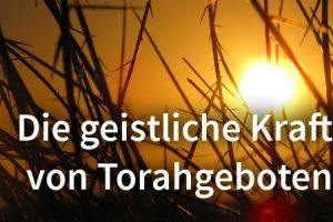 Die geistliche Kraft von Torahgeboten – Teil 1: Tzitzit