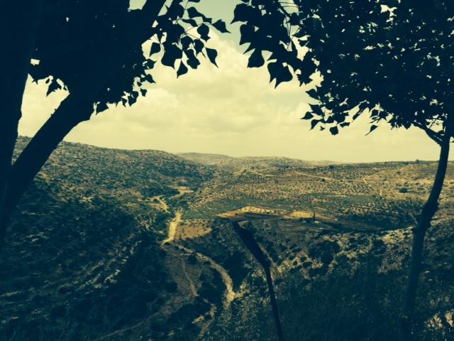 Foto Israel 5