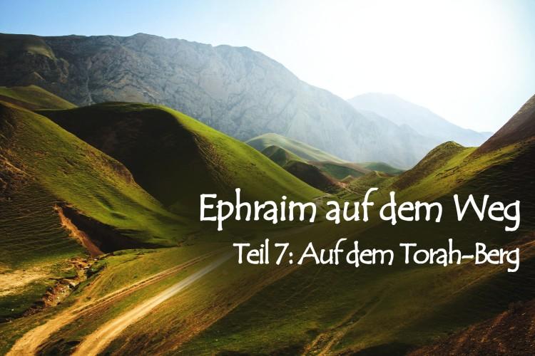 Ephraim auf dem Weg – 7. Auf dem Torah-Berg