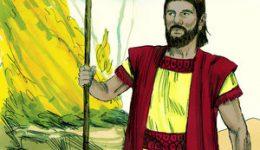 Zwischen Bethel und Ai – Wo siedelst Du?