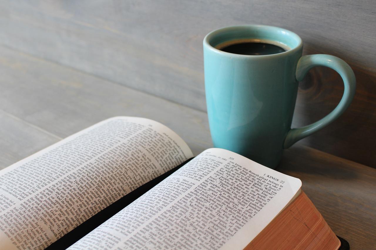 In Einem Jahr Durch Die Bibel Der Bibelleseplan 2018 19