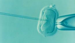 Erstes genmanipuliertes Baby geboren!
