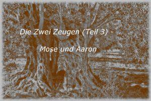 Die Zwei Zeugen (Teil 3) – Mose und Aaron