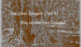 Die Zwei Zeugen (Teil 5) – Die verdorrten Gebeine