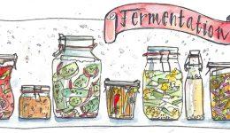 2. Wilde Fermente aus dem Weckglas direkt auf den Teller