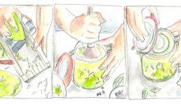 Meine Lieblingsrezepte von Sauerkraut bis Kimchi und Wasserkefir