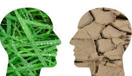 Der gesellschaftliche Klimawandel