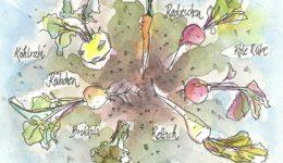 From Root to Leaf: Gemüse von Blatt bis Wurzel
