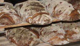 """Der Mensch lebt nicht nur vom Brot allein, sondern von jedem Wort, das aus dem Munde Adonais kommt!"""""""