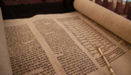 Eindruck im Torahhouse 1.5.