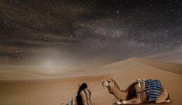 Weckruf für die Braut, Teil 14, Die Wüste als Schutzort während der Großen Trübsal, Teil 3