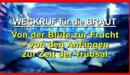 58_TITEL_Weckruf-für-die-Braut_Hildegard_Teil-58