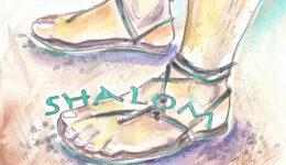 füße shalom-web